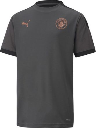 PUMA Man City Trainingsshirt Zwart
